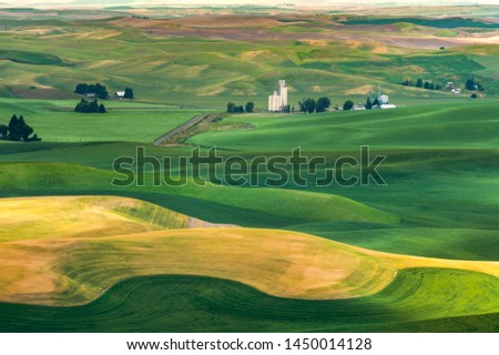 Beautiful Farmland Patterns Seen From Steptoe Butte, Washington. High above the Palouse Hills on the eastern edge of Washington, Steptoe Butte offers unparalleled views of a truly unique landscape. #1450014128