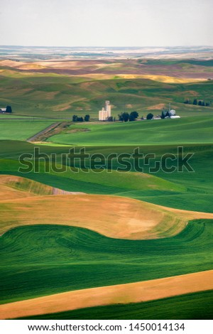 Beautiful Farmland Patterns Seen From Steptoe Butte, Washington. High above the Palouse Hills on the eastern edge of Washington, Steptoe Butte offers unparalleled views of a truly unique landscape. #1450014134