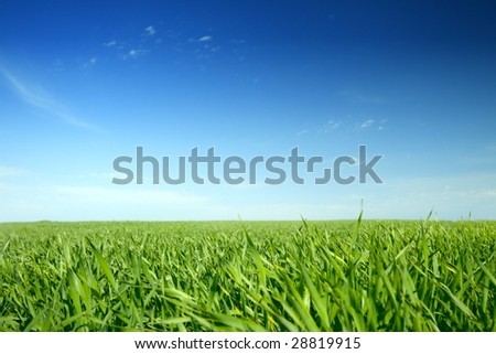 Beautiful farmlands with lovely clouds and green grass