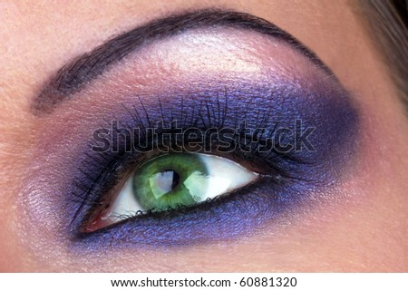 Beautiful fashion make-up of female eye, macro shot
