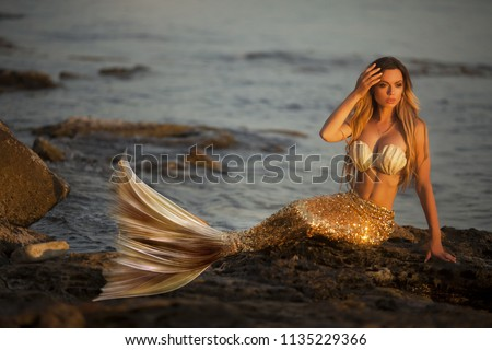 Beautiful fashionable mermaid sitting on a rock by the sea #1135229366
