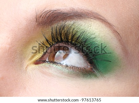 beautiful female eye with bright make-up - stock photo