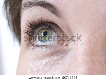 stock photo : Beautiful female eye without makeup