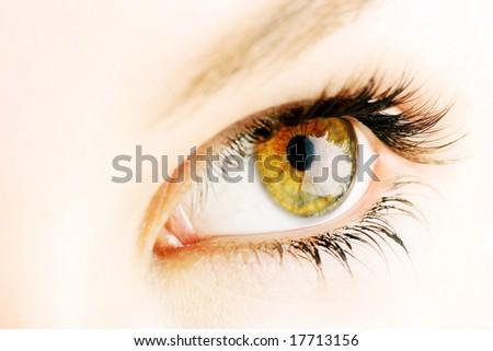 beautiful female hazel coloured eye
