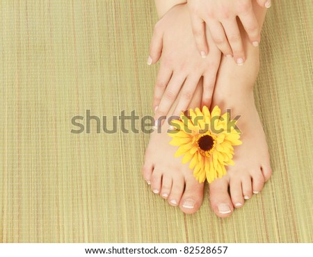 Beautiful female legs with a gerbera flower, isolated on white