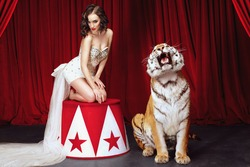 Beautiful female posing  with roaring tiger on the stage with red curtains on the background.