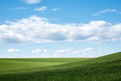 Beautiful field landscape. Countryside village rural natural background at sunny weather in spring summer. Green grass and blue sky with clouds. Nature protection concept.