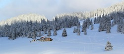 Beautiful fir trees covered with snow next to little house in the Jura mountain by cloudy day of winter, Switzerland