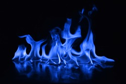 Beautiful fire blue flames on a black background.