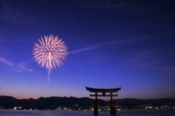 Beautiful fireworks display in Japan