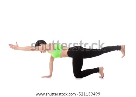 Beautiful fit young woman practices yoga, pilates, doing balance exercise bird dog, kneeling opposite arm and leg extension, asana sunbird (chakravakasana), fitness training for spine and shoulders