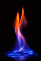 Beautiful flame of burning alcohol, great design for any purposes. Abstract blaze fire flame texture background. Gas flame. Black background.