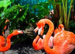 Pro dan Kontra Memilih Antara Orlando Villas dan Hotel