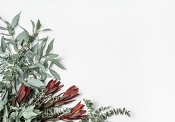 Beautiful flat lay floral arrangement of mostly Australian native flowers including Silvan Reds, Wattle foliage and Eucalyptus leaves with a white background.