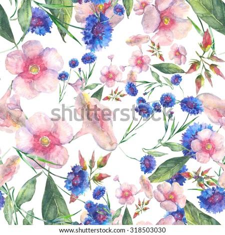 Beautiful Floral seamless pattern. Phlox and cornflowers.