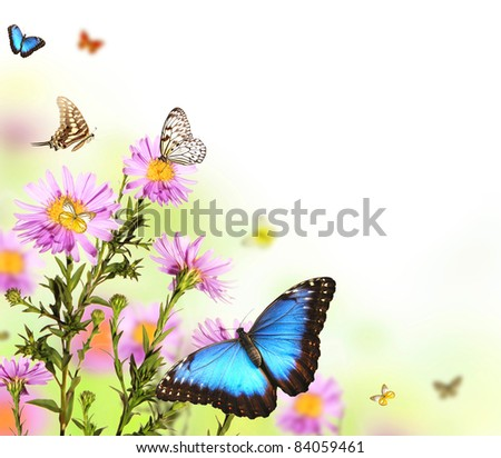 Beautiful flower background with butterflies