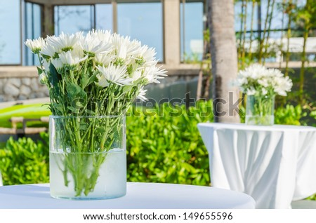 Beautiful flower in the vase