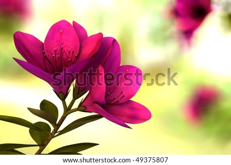 Beautiful flower with environment 1