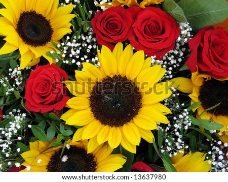 stock photo : beautiful flower - yellow Sunflower and red roses