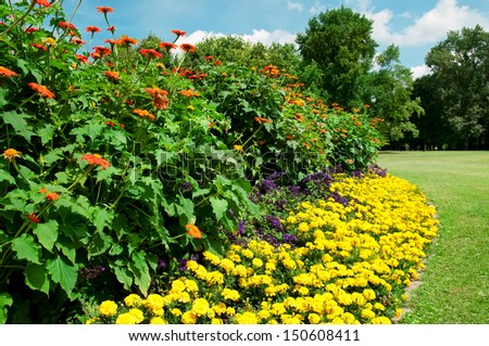 Beautiful flowerbed in summer park