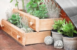 Beautiful flowerbed made of shelves, outdoors. Waste recycling concept