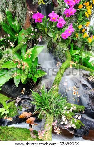 Beautiful flowers and waterfall