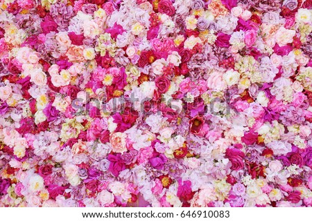 Beautiful flowers as background