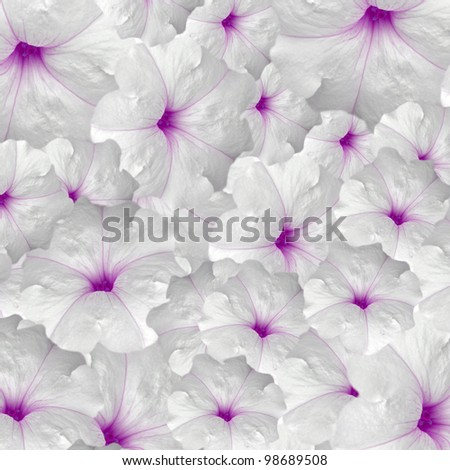 beautiful flowers background design