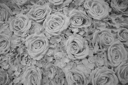 Beautiful Flowers In A Buch