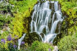 beautiful flowers of Vidae Waterfall at Crater Lake National Park