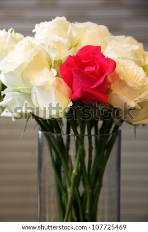 Beautiful flowers or red and white rose
