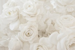 Beautiful flowers, White Roses