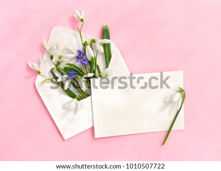 Beautiful flowers white snowdrops (Galanthus nivalis), blue Scilla siberica (Siberian squill) in postal envelope and blank sheet with space for text on a pink paper background. Top view, flat lay