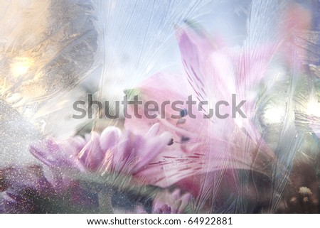 beautiful flowers with ice texture