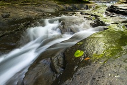 Beautiful flowing stream in nature