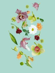 Beautiful flying pastel flowers falling and levitating against mint background. Creative spring bloom or floral layout. Minimal birthday, Mother's, Valentines, Women's day or wedding concept.