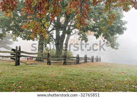 Beautiful foggy landscape in Virginia mountains with beautiful Fall colored trees