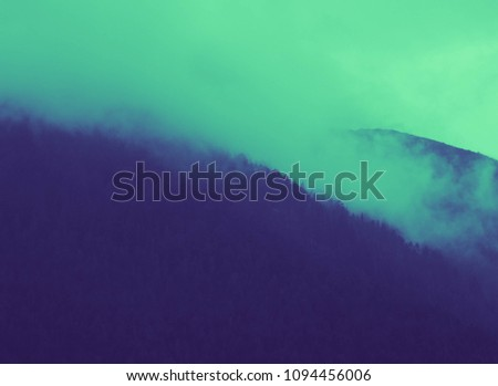 beautiful foggy mystic mountains. Fog clouds at the pine tree mystical woods, morning. Europe, mysterious alpine landscape. #1094456006