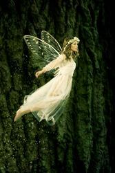 Beautiful forest fairy in flight