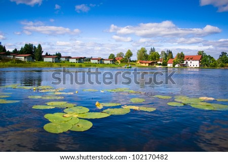 Beautiful forest lake with water lilies on surface on a summer day near city of Saldus, Latvia - stock photo