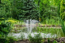 Beautiful fountain in garden pond against background of emerald green of shady summer garden. Freshness of water jets creates a mood of relaxation and happiness.
