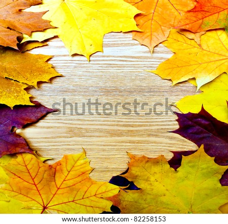 beautiful frame from the autumnal leaves over wooden board background