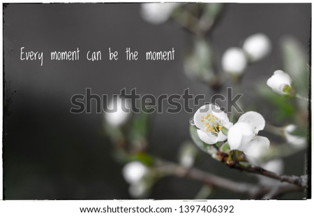Beautiful framed card about white spring flower with raindrops. Message telling: every moment can be the moment  #1397406392