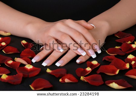 Beautiful french manicure and rose petals