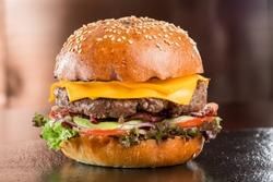 Beautiful fresh burger, fast food, fresh meal