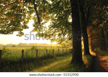 beautiful fresh morning with sun rays and dramatic light