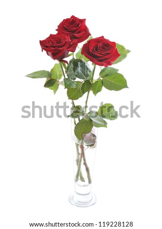 Beautiful fresh red roses in a glass vase isolated on white background