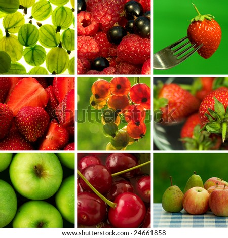 Beautiful fruits collage
