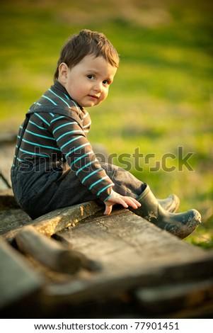 beautiful funny boy sitting on cart