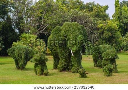 Beautiful funny bushes trimmed into elephants shape in garden